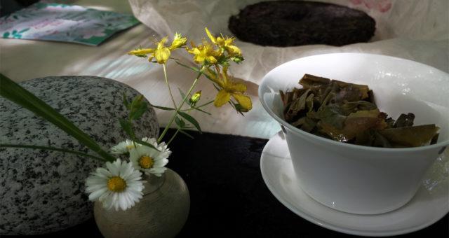 Fête du thé au Rouge-Cloître 20118