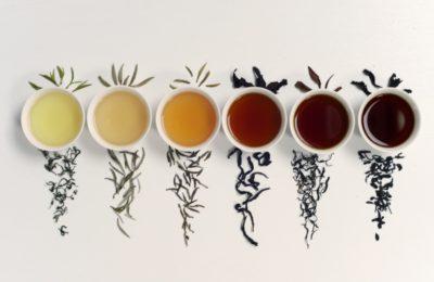 6 familles de thés chinois et leur préparation 2019