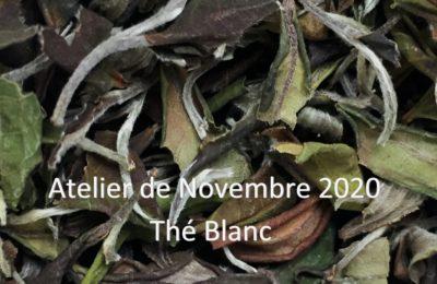 Novembre : Thé blanc – Bai Cha 白茶