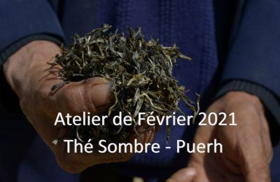 Février : Thé sombre / Puerh – Hei Cha 黑茶